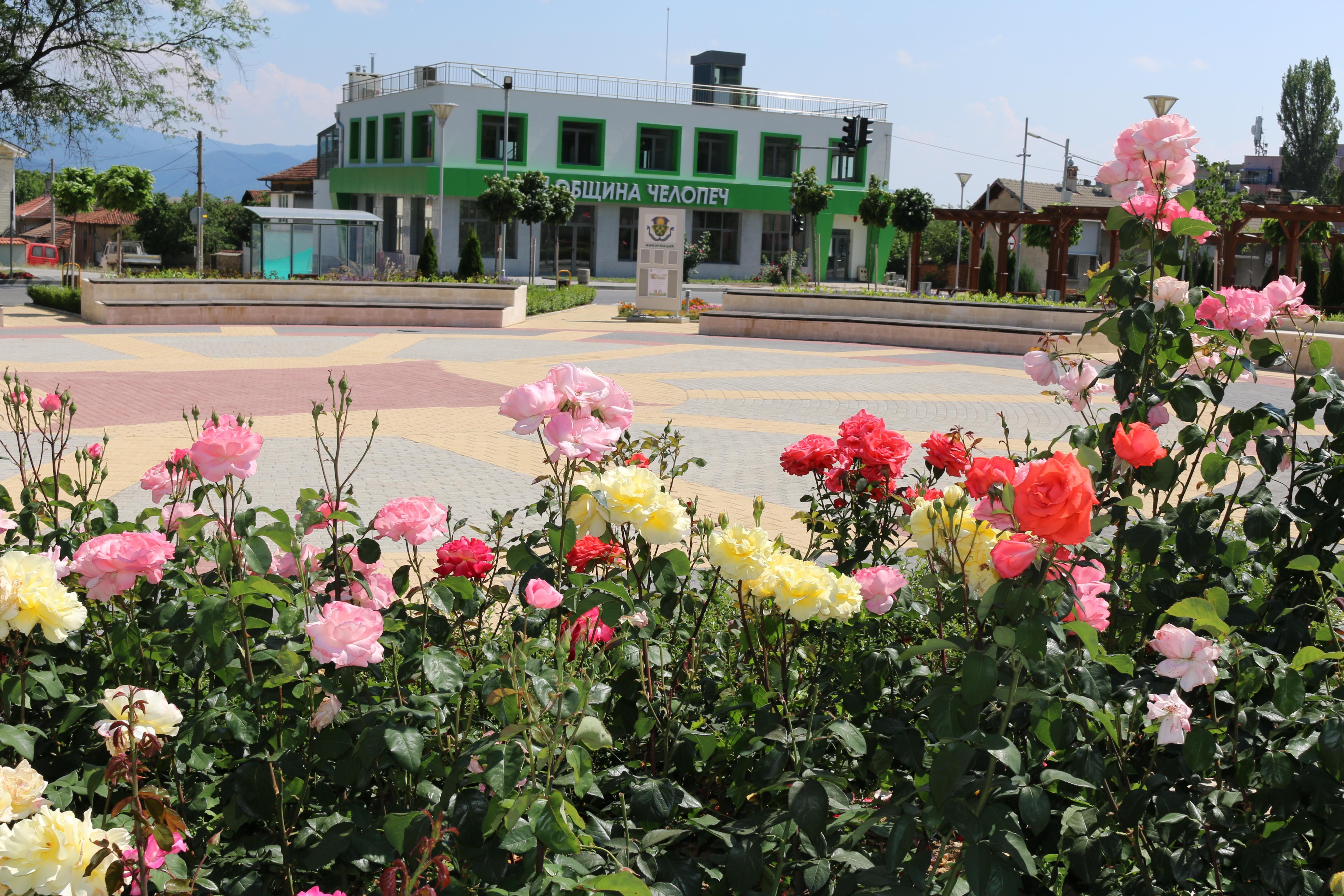 Сграда-община